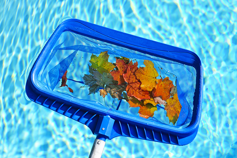 Importance of regular pool cleaning